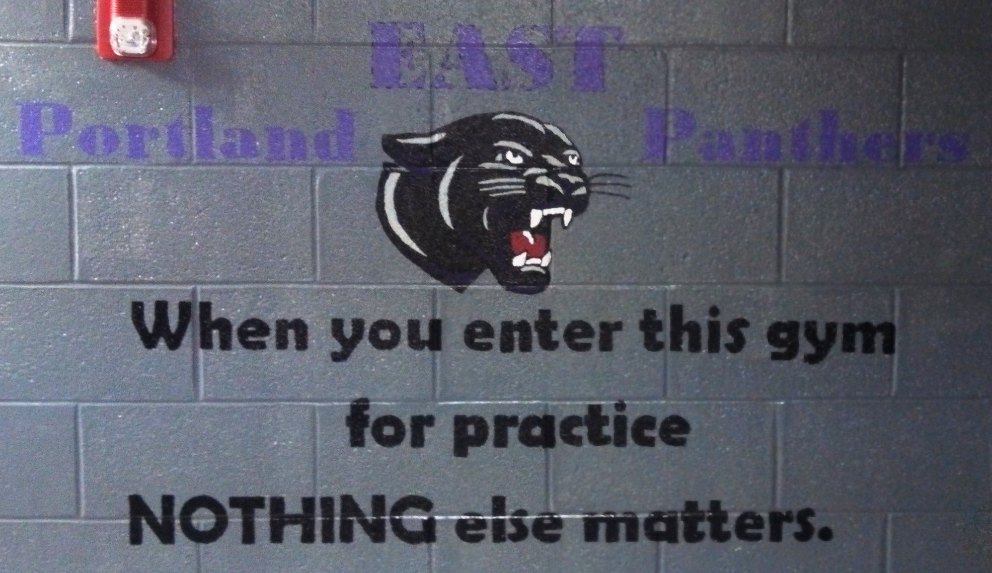 lockerroom panther